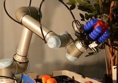 瓜果蔬菜识别采摘机器人—未来农场
