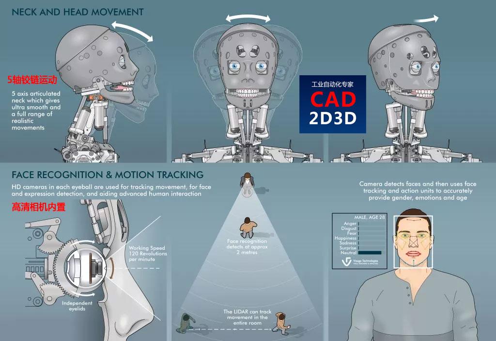 仿人机器人头部构造,内部结构